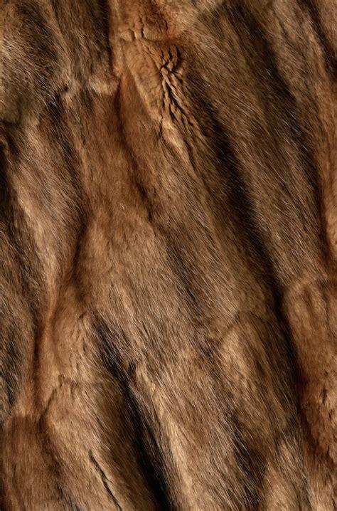 texture fur brown fur texture background background