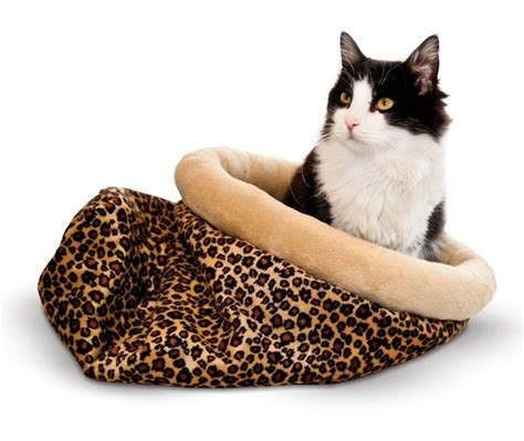 Why Do Cats On Beds by Why Your Cat Needs A Heated Bed This Fall