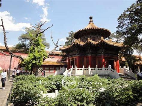 Imperial Garden West by Qianqiu Pavilion Imperial Garden Beijing Forbidden City