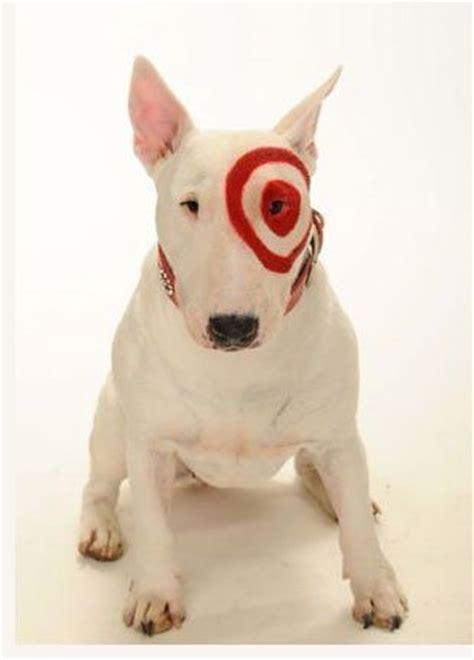 bullseye breed bullseye target s mascot at new york stock exchange files