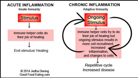 chronically positive my s 5 step system to staying positive books acute chronic inflammation in the