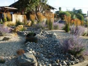 drought tolerant landscaping turiace landscaping