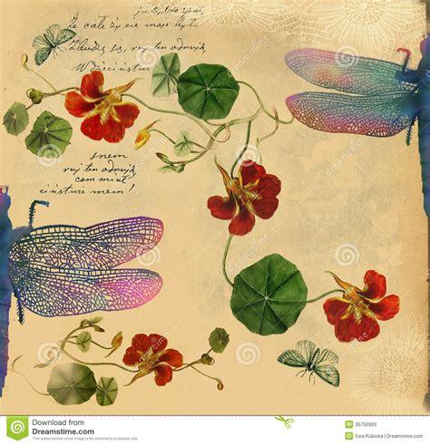 imagenes vintage libelulas fondo del vintage con el ejemplo de la lib 233 lula fotos de