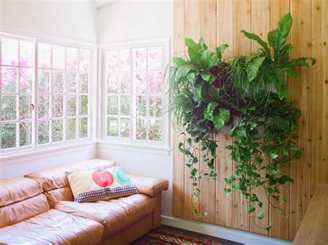 interior plant wall living wall planter living wall planters woolly pocket
