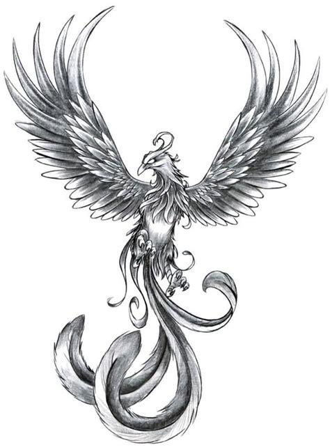 grey ink phoenix tattoo design