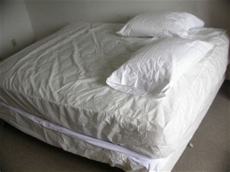 isopropyl alcohol bed bugs getting rid of bed bugs thriftyfun