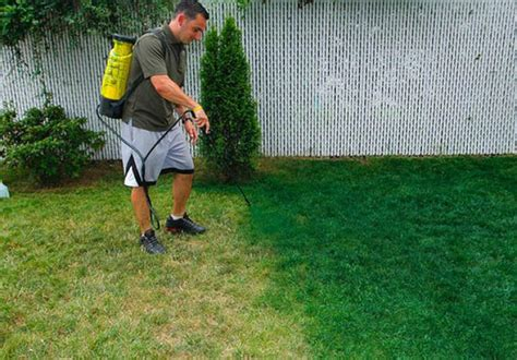 spray painting grass green lawns try a spray paint makeover ny daily news