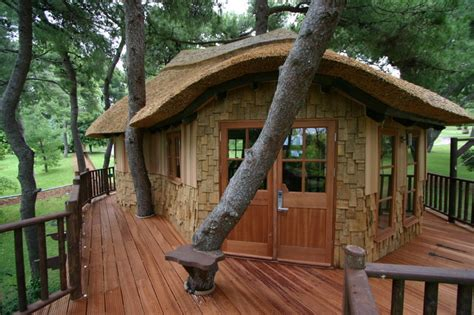 tree house plans uk blue forest tree house