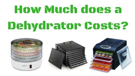 how much does a log home cost cost evaluation how much does a food dehydrator cost these 8 feature