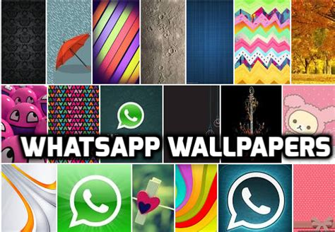 whatsapp wallpaper update download 15 simple stylish whatsapp wallpapers and set as