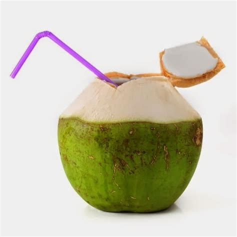 kelapa hijau kasiat dan cara penggunaannya problem berikut ini khasiat dan manfaat minum air kelapa muda