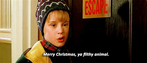 Merry Christmas Ya Filthy Animal Meme - home alone 2 quotes movie quotes