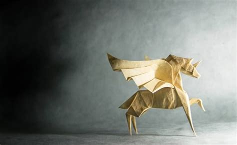 Professional Origami - amazing origami animals by gonzalo garcia calvo gift