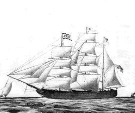 immigration boats 1800s ireland emigration and immigration genealogy