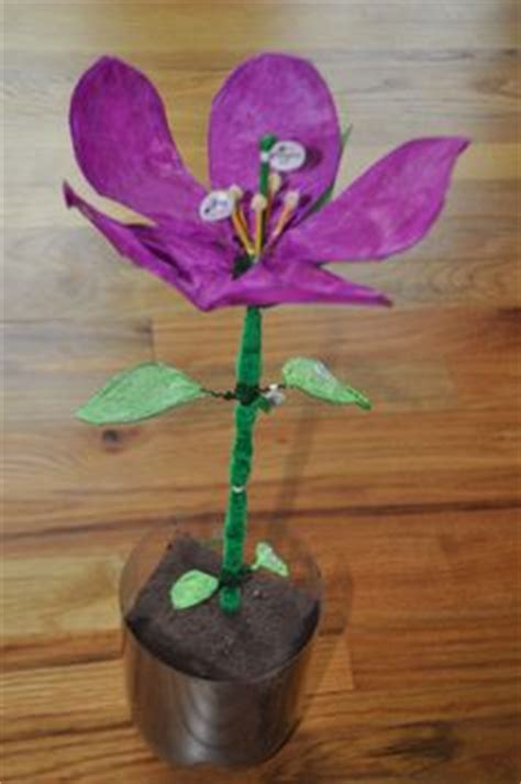 8 Floral And Lovely Projects by 1000 Images About Stem Activities On Plant