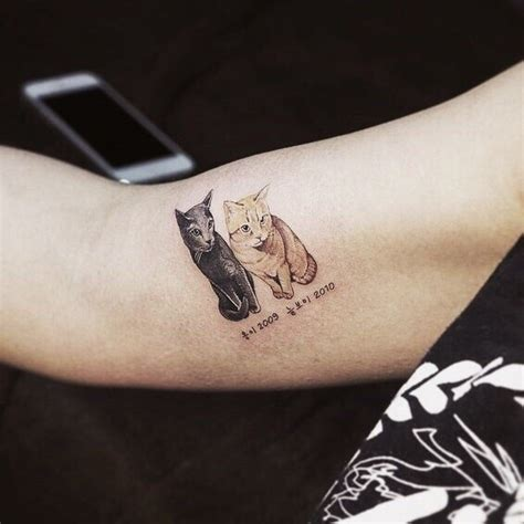cat whiskers tattoo 79 beautiful cat tattoos for cat tattoolot