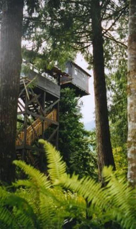 cedar creek treehouse washington stairway to heaven cedar and treehouse hotel on