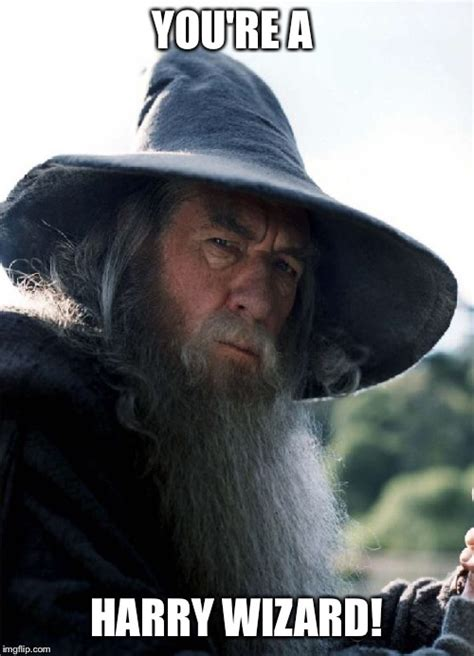 You Re A Wizard Harry Meme - gandalf no other choice imgflip