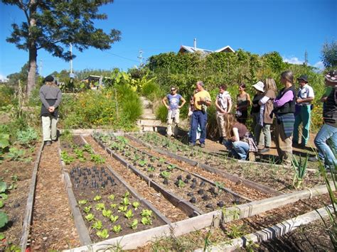 Biodynamic Gardening by Gift Guide For A Sustainable I Quit Sugar