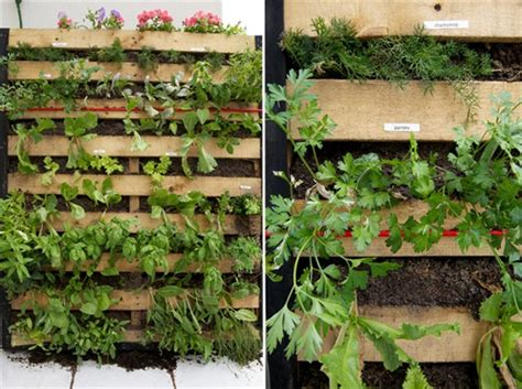 Vertical Garden Made From Pallets Creates Pallet Vertical Garden Yourself Diy Furniture