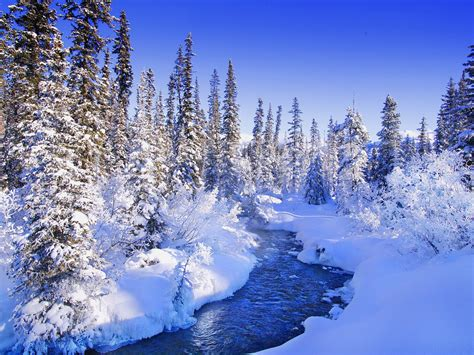 beautiful winter beautiful winter wallpaper 20118