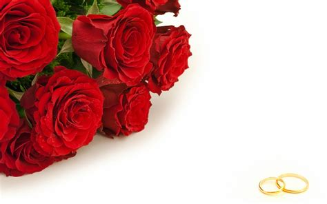 Roses rouges marriage annulment