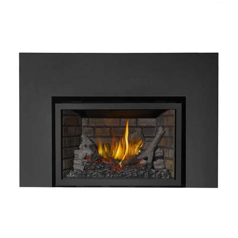 Napoleon Inserts Fireplaces by Napoleon Xir3nsbdeluxe Gas Fireplace Insert At