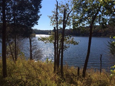 Taylorsville Lake Cabin Rentals by Taylorsville Lakebait Shop And Rentals Picture Of