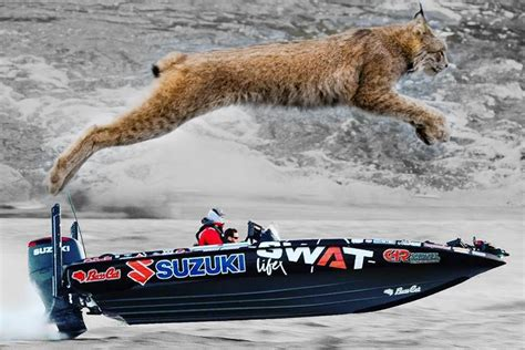 bass cat boats arkansas bass cat boats boat service midway arkansas