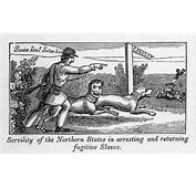 Abolitionist Political Cartoon Photograph By Everett