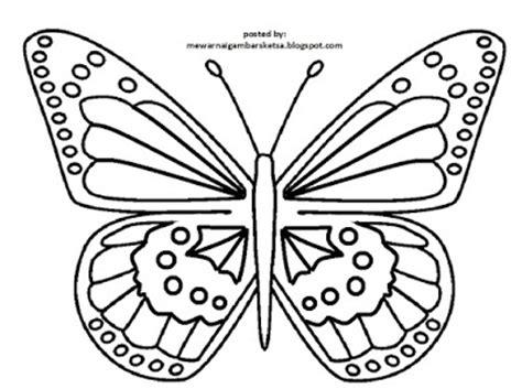 mewarnai gambar mewarnai gambar sketsa hewan kupu kupu 2