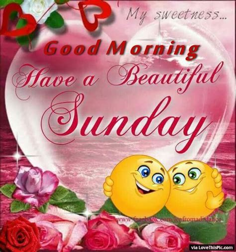 sunday good morning beautiful good morning have a beautiful sunday pictures photos and