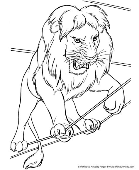 Circus Animal Coloring Pages Printable Performing Circus Circus Animals Coloring Pages