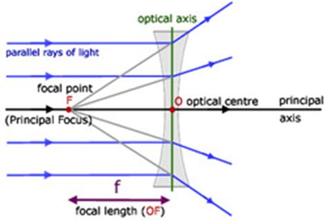 diagram of concave and convex lens diagrams year 9 light unit