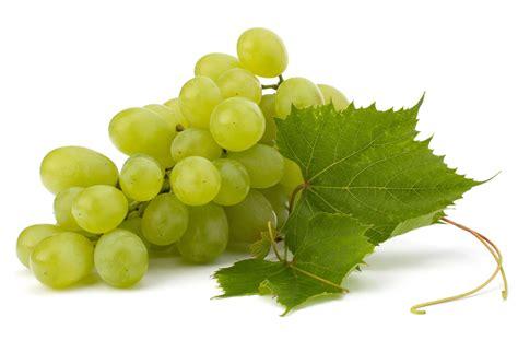imagenes de uvas naturales dieta de la uva 1001 consejos
