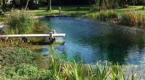 Backyard Pond Pool Chlorine Free Swimming Pools Healthy And Eco Friendly Backyard Ideas