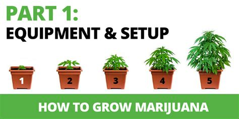 how to grow marijuana step 1 equipment amp set up