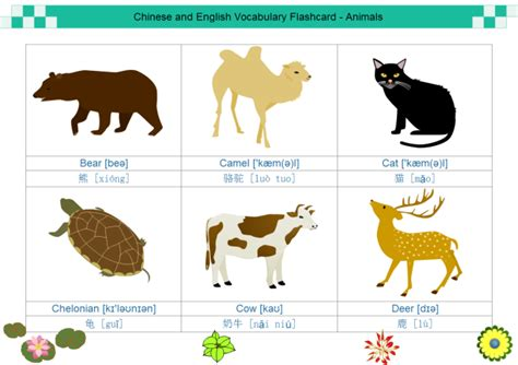 Animal Cards Template by Flash Card Exles Learn And Visually