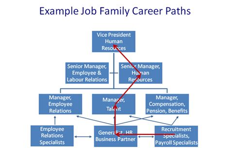 career path template the competency based management framework for