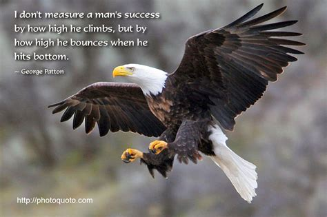 Eagles Sayings Quotes eagle motivational quotes quotesgram