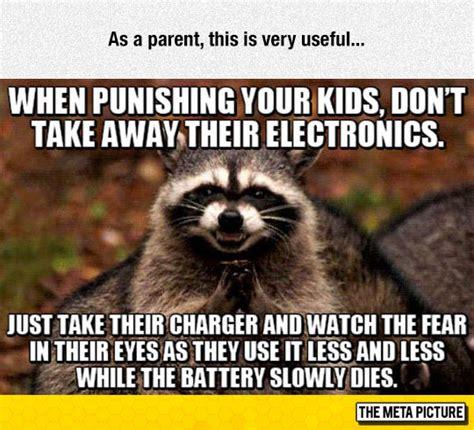 Funny Raccoon Meme - very useful