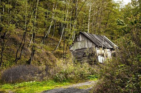 Haus Im Wald by Alten Verlassenen Haus Im Wald Stockfoto Colourbox