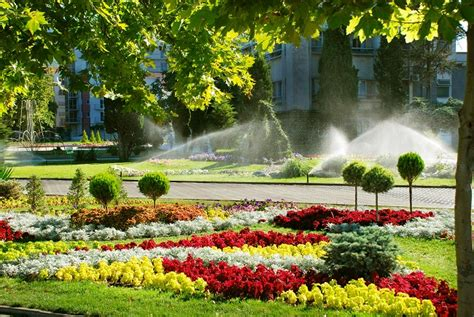 landscaping fort worth fort worth tx commercial landscaping maintenance