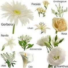 Florales para bodas on pinterest mesas bodas and centerpieces