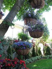 flowers pots hanging from trees the landscaping