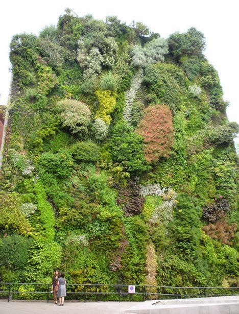 madrid s green wall is flourishing as is the caixa forum