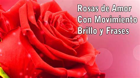 imagenes de amor con movimiento y brillo para celular im 225 genes de rosas de amor con movimiento rosas de amor con
