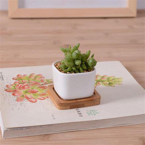 Gardener S Supply Flower Pot Garden Supplies White Creamic Flower Pot With Bamboo Tray