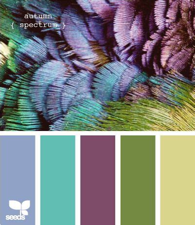 color inspiration room colors inspiration and color inspiration on pinterest