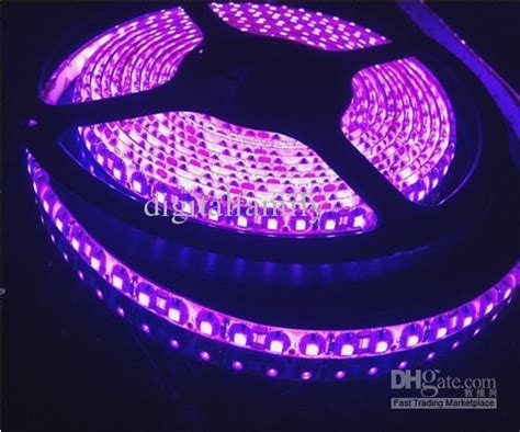 purple led light strips purple led light 5m 16ft 3528 smd bright 48w waterproof 12v 120led m